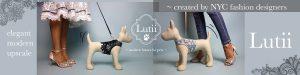 new dog harness designs! Elegant/upscale/designer